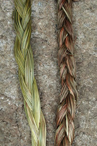 sweetgrass Sweetgrass Braid